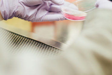 mesa de laboratório em aço inox
